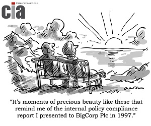 Precious Beauty - Audit Cartoon