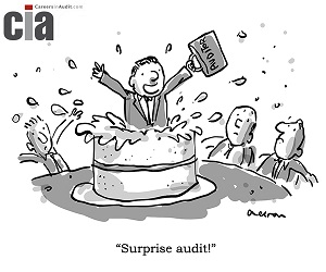 Surprise Auditor - Audit Cartoons