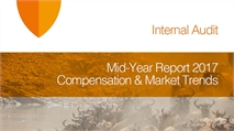 Internal Audit - Compensation and Market Trends - Mid-Year report 2017