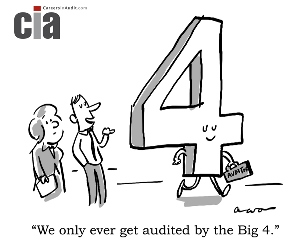 Audit Cartoon - Big4