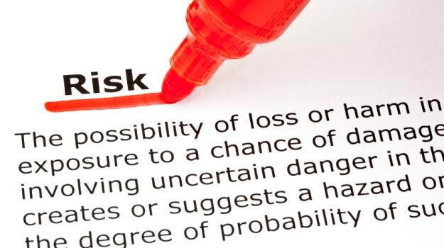 Essays on risk management
